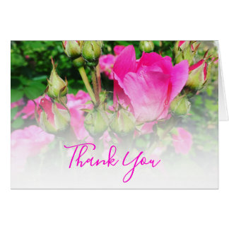 Pink Rose White Ombre Thank You Card
