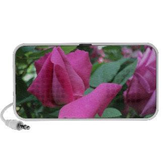 Pink Rosebud Speaker