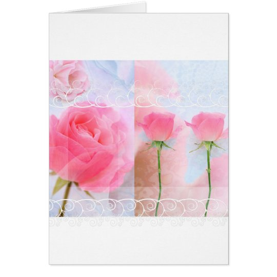 Pink roses and blue card