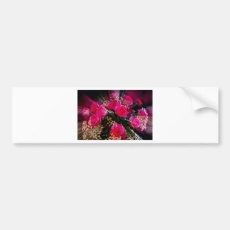 Pink Roses Bouquet Explosion Bumper Sticker