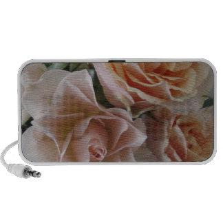 pink roses ddl iPod speakers