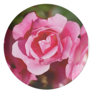 Pink Roses Decorative Plate