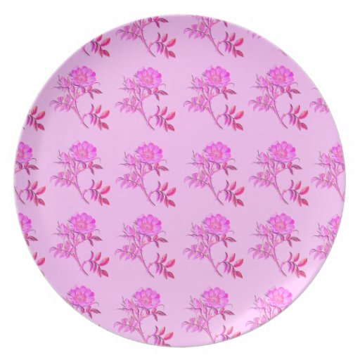 Pink Roses pattern Party Plates