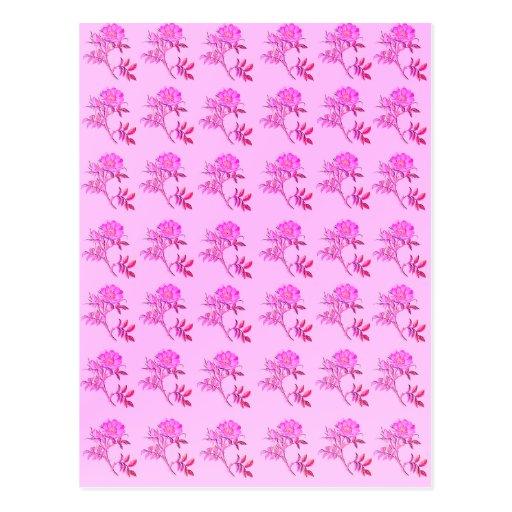 Pink Roses pattern Postcards