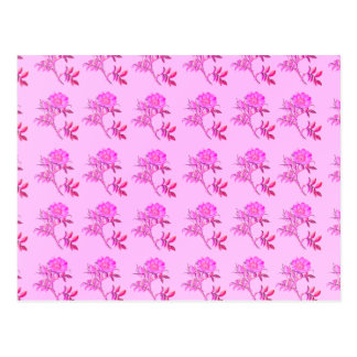 Pink Roses pattern Postcard