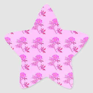 Pink Roses pattern Star Sticker