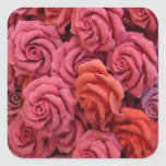 Pink roses square sticker