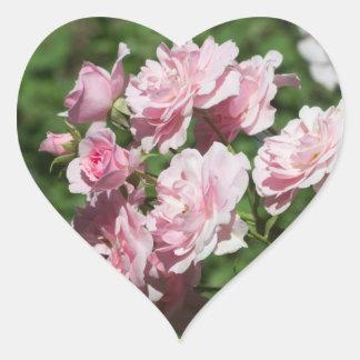 Pink Roses Heart Sticker