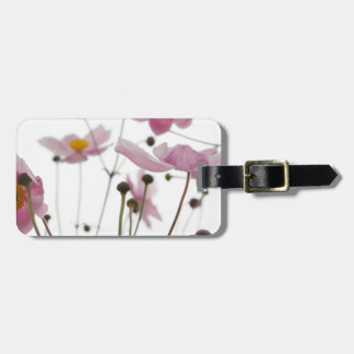 Pink See Through Daisy Flowers Luggage Tag
