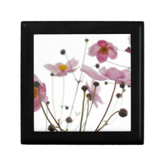 Pink See Through Daisy Flowers Small Square Gift Box