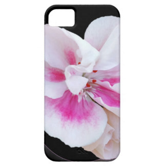Pink Shades iPhone 5 Case