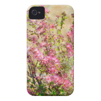 Pink Spray iPhone 4 Cases