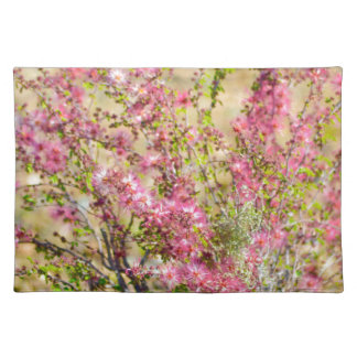 Pink Spray Placemat