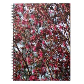Pink Spring Blooms Spiral Note Book