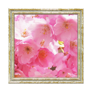 Pink Spring Blossoms Canvas Print