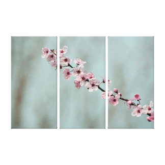 Pink Spring Blossoms Stretched Canvas Prints