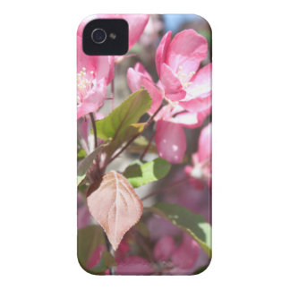 Pink Spring Flower Blossoms iPhone 4 Case
