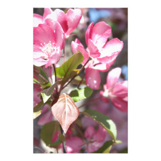 Pink Spring Flower Blossoms Stationery