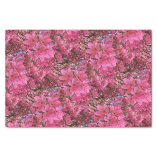 Pink Spring Flowers Tissue Paper