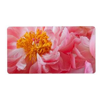 Pink Spring Peony Flower - Peonies Template
