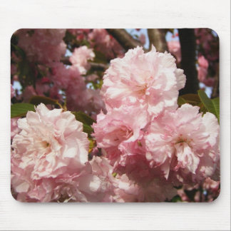 Pink Spring Tree Flowers Mouse Pad