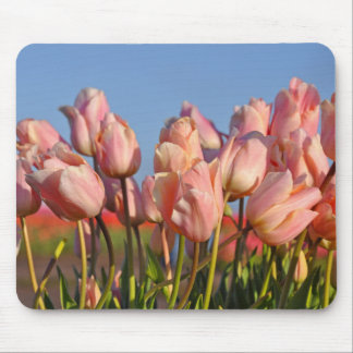 Pink spring tulips mouse pad
