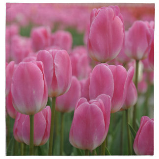 Pink spring tulips napkin