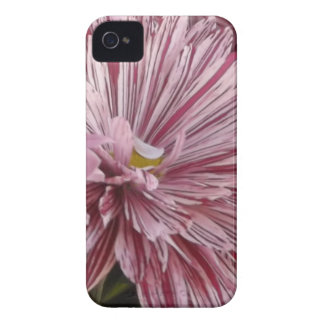 Pink striped flower iPhone 4 cover