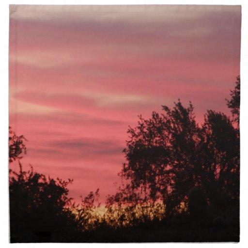 Pink Sunset Arizona Napkins