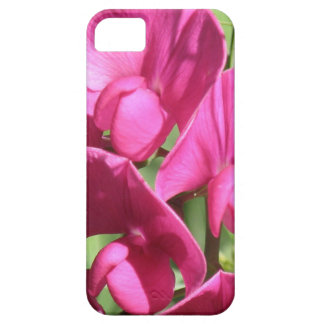 Pink Sweet Pea Flowers iPhone 5 Covers