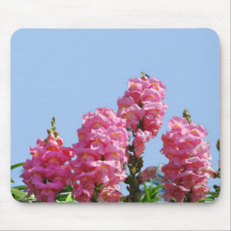 Pink Sweet Pea Flowers – Mouse Pad