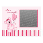 Pink Teddy Bear Photo Card Postcards