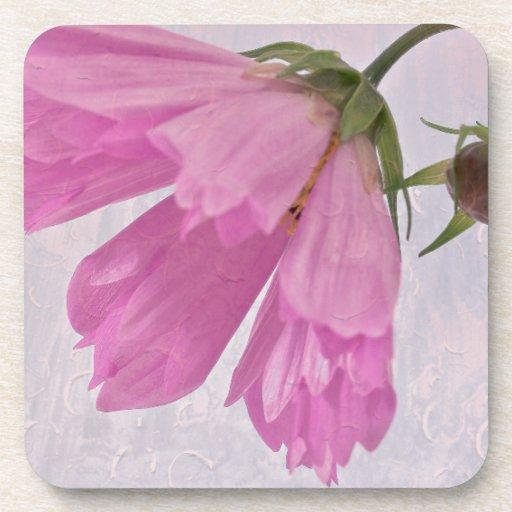 Pink Textured Cosmo Flower Beverage Coasters