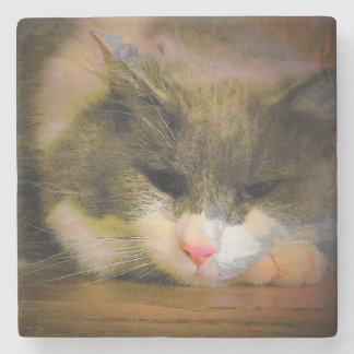 Pink the Cat Sullen Mood Stone Coaster