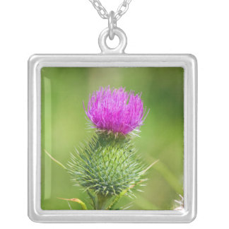Pink thistle flower necklace, pendant, gift idea