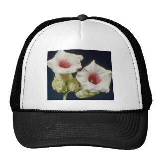 Pink Thunbergia fragens flowers Mesh Hat