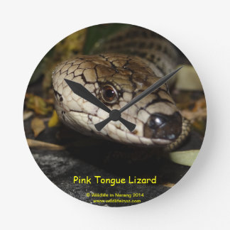 Pink Tongue Lizard Clocks