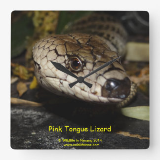 Pink Tongue Lizard Wall Clocks
