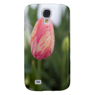 Pink Tulip Blackberry Case