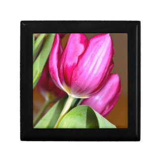 Pink Tulip Gift or Jewelry Box