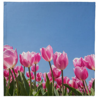 Pink tulips field with blue sky napkin