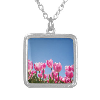 Pink tulips field with blue sky silver plated necklace