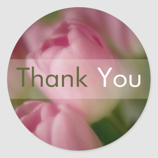 Pink Tulips • Thank You Sticker