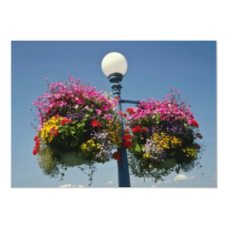 Pink Victoria's famed hanging flower baskets, Cana 13 Cm X 18 Cm Invitation Card