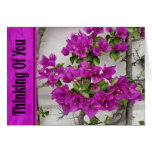 pink vine thinking of you greeting card