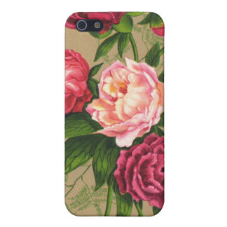 Pink Vintage Roses iPhone Case 4 iPhone 5/5S Case