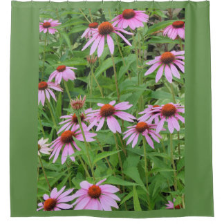 Pink/Violet Daisies Shower Curtain