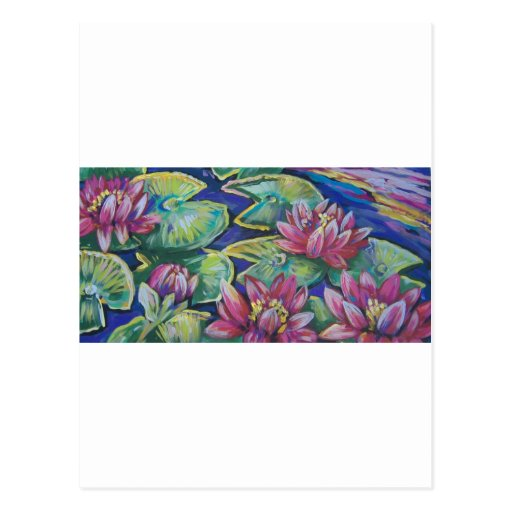 pink water lilies post card