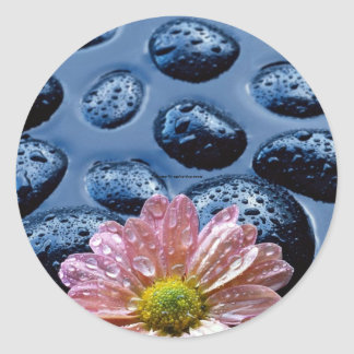 Pink water lily against blue stones sticker