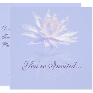 Pink Water Lily and Reflection over Lavender Card
